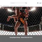 MMA Industries